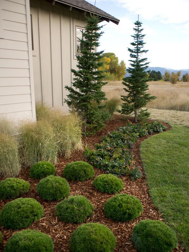 garden design garden design with landscape design software hgtv, Natural flower