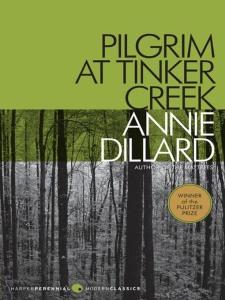 pilgrim-image